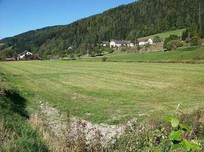 702559_Bild_1__Gewerbegrund_in_Muerzzuschlag_Ost.jpg